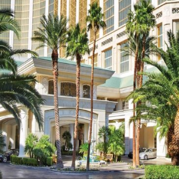 Las Vegas Palm Tree Trimming Pros Reviews Three 5- Star Hotels in Las Vegas, Nevada